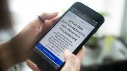 Эксперты высоко оценили систему электронного голосования вРФ