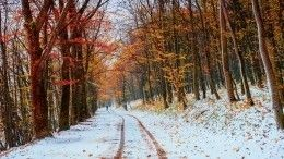 Сентябрьские снегопады спровоцировали массовые аварии врегионах РФ