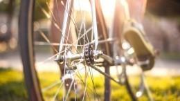 Велосипедист нарисовал знаменитую обложку альбома Nirvana при помощи GPS