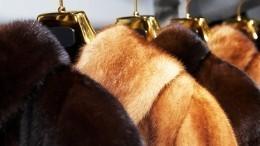 Вместо норки— пластик: почему отказ отнатурального меха ведет кэко-катастрофе