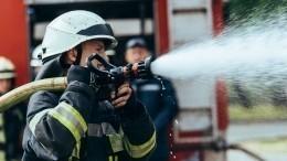 Отец остановил пытавшихся спасти детей изпожара: «Они все равно умерли»