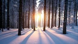 Россиян предупредили опогодных аномалиях грядущей зимой