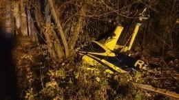 Видео сместа крушения вертолета Robinson вПодмосковье