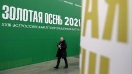 Новинки российского АПК представили навыставке «Золотая осень»
