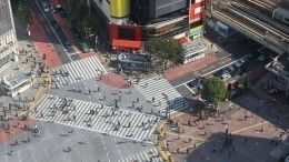 Мощное землетрясение произошло вТокио, стены зданий сильно раскачиваются