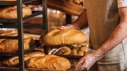 Супермаркет иРоспотребнадзор вВологде поспорили из-за хлеба без упаковки