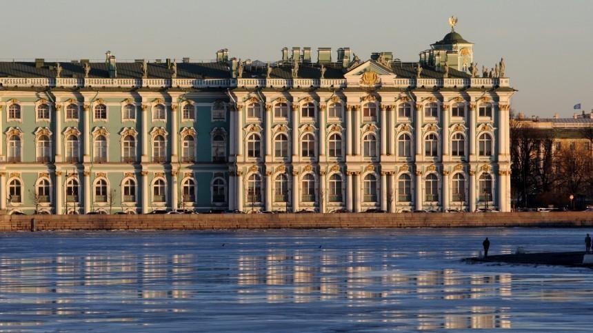 Петербуржцы ополчились насемьи смалышами из-за рекламного ролика Эрмитажа
