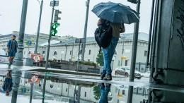 Тишковец спрогнозировал ливни ипохолодание вМоскве