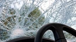 Два человека погибли при столкновении автомобиля слосем вБашкирии