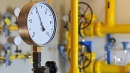 Немецкая партия «зеленых» призвала начать диалог сРФпо«газовому вопросу»