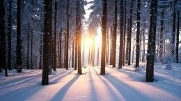 Снег иустойчивый минус: метеоролог предрек наступление зимы уже вноябре