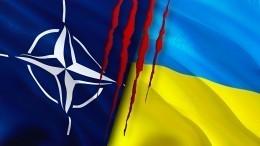 Тонут волжи идают невыполнимые обещания: Куда заведет блок НАТО его нынешняя политика